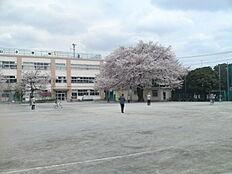小学校浜田山小学校まで1188m