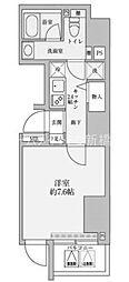 東京都港区赤坂5丁目の賃貸マンションの間取り
