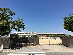 [テラスハウス] 兵庫県姫路市飾磨区加茂 の賃貸【兵庫県 / 姫路市】の外観