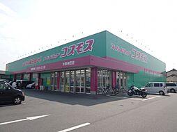 ディスカウントドラッグ コスモス 御笠川店(1338m)