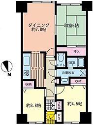 シーサイド片瀬江ノ島[502号室]の間取り