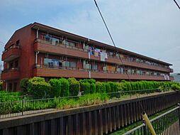 埼玉県越谷市蒲生愛宕町の賃貸マンションの外観