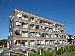 キャビンディシュハイツ[305号室]の外観