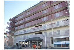 京都府京都市伏見区向島津田町の賃貸マンションの外観