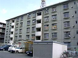 KNハイツ[503号室]の外観