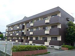 昭和マンション[106号室]の外観