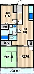 メイフェア—鹿島田No.4[1階]の間取り