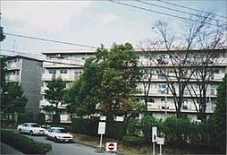 大津ヶ丘団地5号棟[104号室]の外観