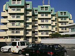 サンA棟[5階]の外観