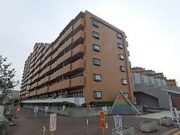 ライオンズマンション金剛[12階]の外観