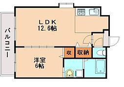 井相田アーバンスクエア[4階]の間取り