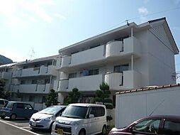 徳島県徳島市南佐古四番町の賃貸マンションの外観