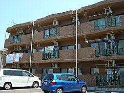 ロイヤルパインズ[3階]の外観