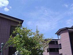 ベルヴィルD[3階]の外観