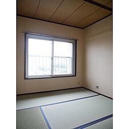県ドリームハイツ8号棟1109号室[1109号室]の外観