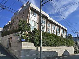 ラ・ピアッツァ上野毛 1階[1階]の外観