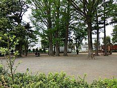 森林公園 (約300M)