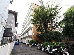 ジュネシオンSEVEN[6階]の外観