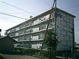 ハイツ堤下[3階]の外観