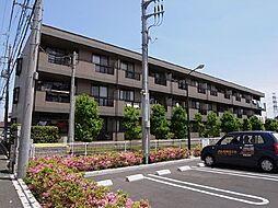 千葉県船橋市咲が丘1丁目の賃貸マンションの外観
