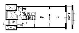福岡県福岡市南区市崎1丁目の賃貸マンションの間取り