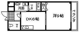大阪府貝塚市福田の賃貸マンションの間取り