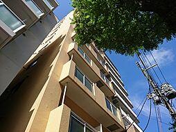 アイビーパレス31[805号室]の外観