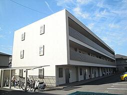 愛媛県松山市居相5丁目の賃貸マンションの外観