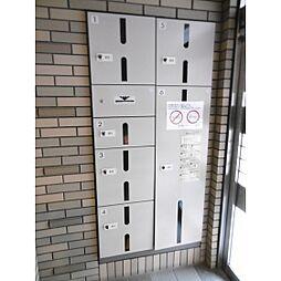 熊本県熊本市中央区九品寺5丁目の賃貸マンションの外観