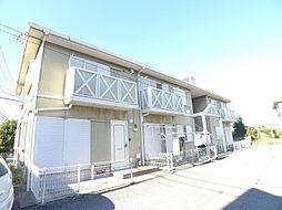 [テラスハウス] 千葉県柏市中新宿1丁目 の賃貸【/】の外観