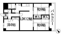 兵庫県川西市花屋敷2丁目の賃貸マンションの間取り