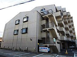 ドミール橘和泉橋本[303号室]の外観