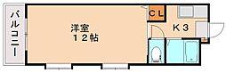 シャトレ和[5階]の間取り