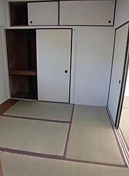 神奈川県秦野市戸川の賃貸マンションの外観