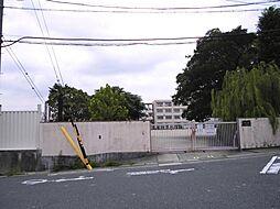 名古屋市立太子小学校まで330m