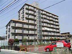 武石ハイツ[5階]の外観