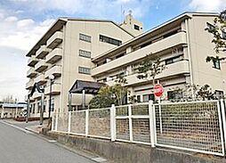 千葉県茂原市上永吉の賃貸マンションの外観