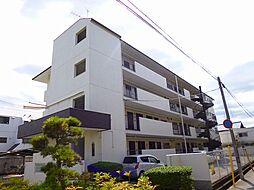 楠葉マンション[2階]の外観