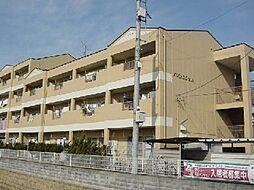 愛知県一宮市木曽川町門間字西大坪の賃貸マンションの外観
