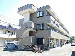 神奈川県小田原市扇町1丁目の賃貸マンションの外観