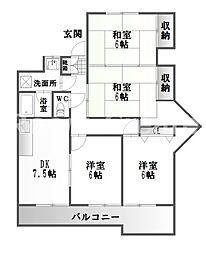 徳島県徳島市住吉6丁目の賃貸マンションの間取り