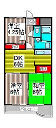 メゾン須賀[5階]の間取り