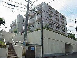 コロナール上野西[203号室]の外観