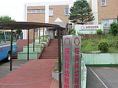 桜美林幼稚園 距離約1600m