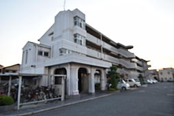 リバーサイド藤井寺[2階]の外観