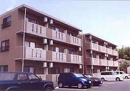 アクア松阪[A307号室]の外観