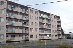 兵庫県加古川市神野町石守の賃貸マンションの外観