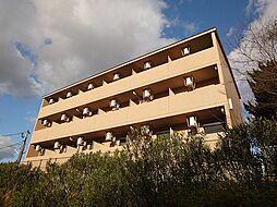 福岡県宗像市自由ヶ丘3丁目の賃貸マンションの外観