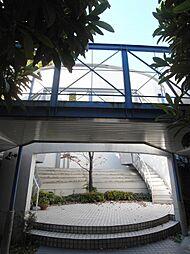コロッセオ志木[2階]の外観