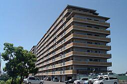 滋賀県湖南市針の賃貸マンションの外観
